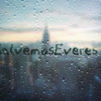 Una ventana con el lema SalvemosEverest de la cuenta de Twitter de mismo nombre.