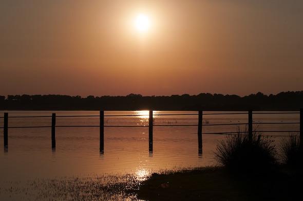 Un atardecer en Doñana. Foto: Pixabay.