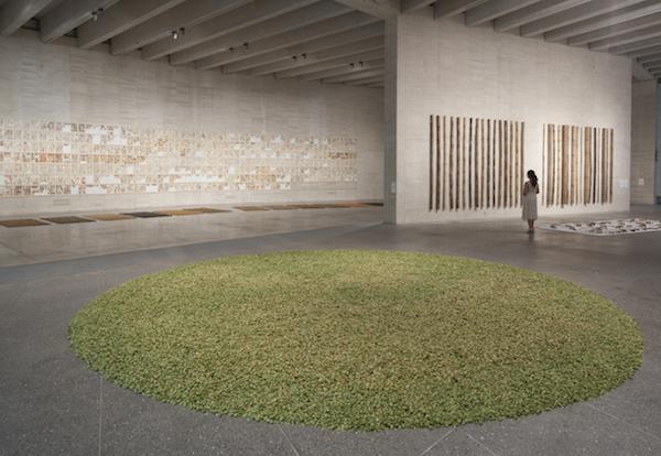 Una vista de la exposición de herman de vries en el MUSAC de León.